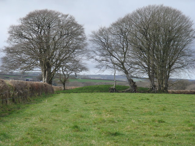 Tumulus near Wrangworthy Cross