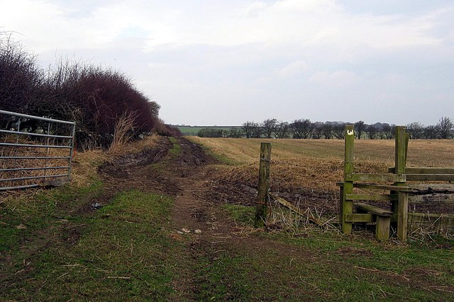 Footpath adjacent to White Hurworth