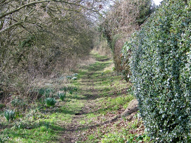 Byway to Green Lane