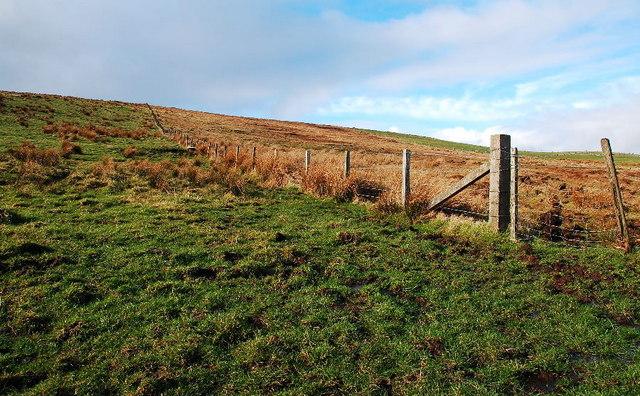 Fence on South Rusky