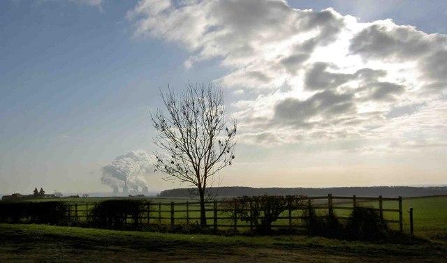 Farmland and fence near Grove