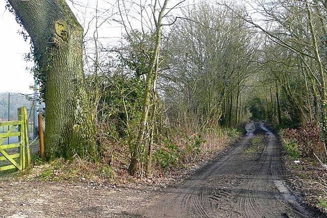 Footpath to Sandleford