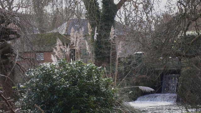 Millrace at Stedham Mill