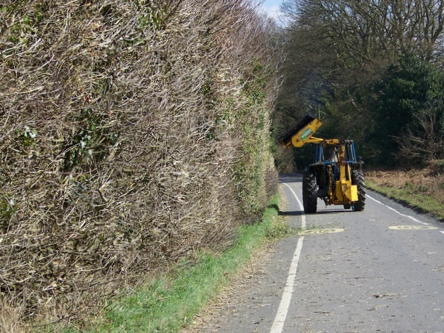 Hedge cutting, Crow Hill