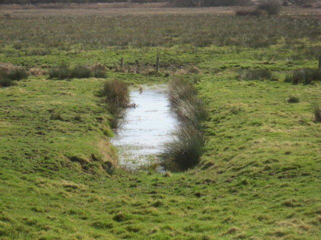 Drainage ditch on Weston Moor