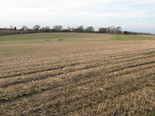 Stubble field east of Southlands Farm