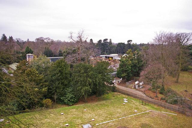Kew Gardens from the Xstrata Treetop Walkway and Rhizotron, Kew Gardens, Surrey