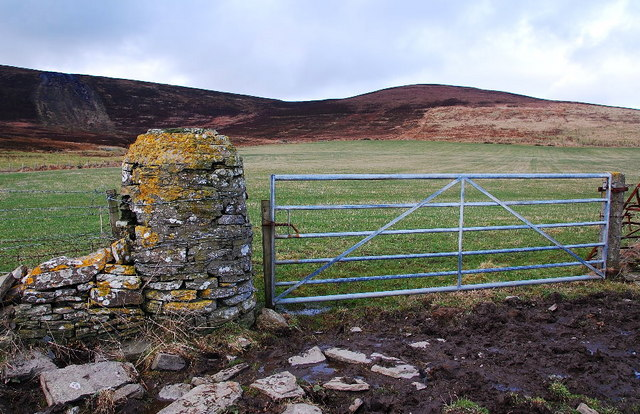 The Gate Post