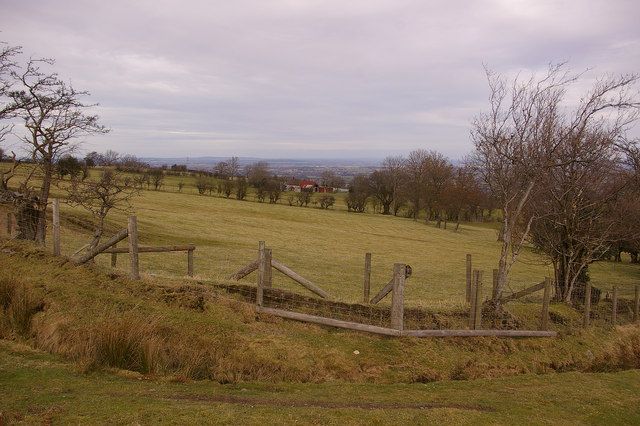 Plush Hill