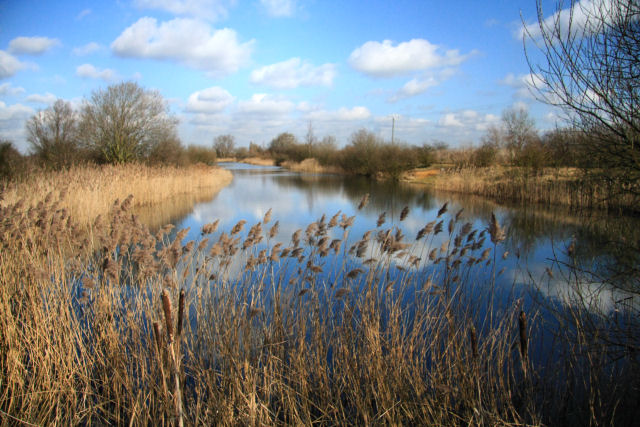 Angling lake at Block Fen