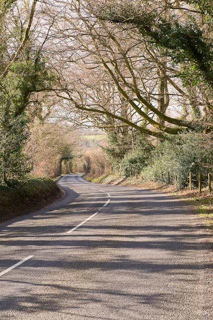 Belmore Lane
