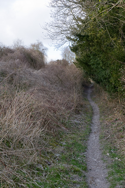 The King's Way north of Whiteflood Farmhouse