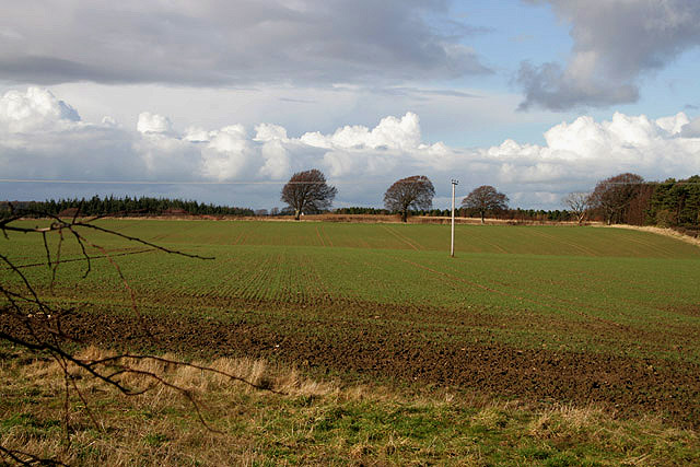 Arable farmland at Humbie
