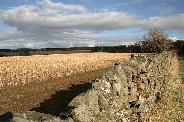 Farmland at Baxtersyke