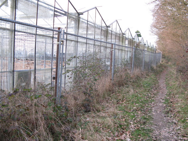 Obsolete greenhouses