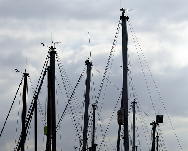 Many Masts at Brough Haven