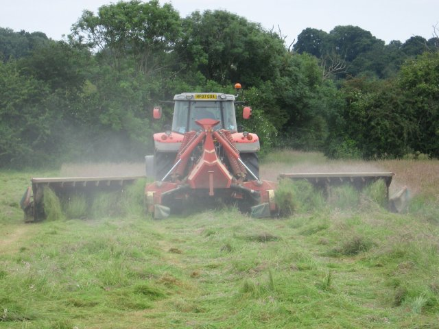 Grass cutting at Bear Mead