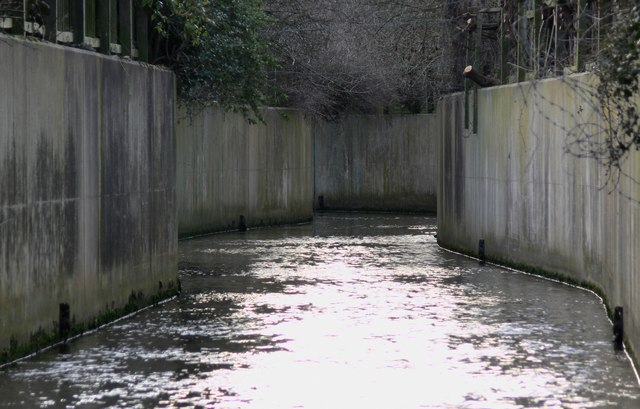 Saffron Brook in Knighton, Leicester