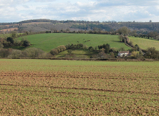 Perrystone Hill from the Wye Valley Walk