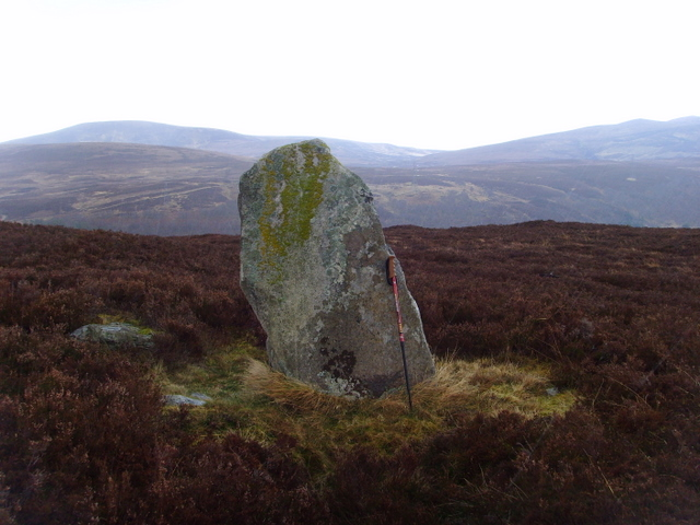Standing Stone at Learable