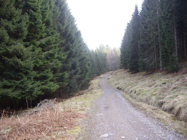 Track to Craiglash
