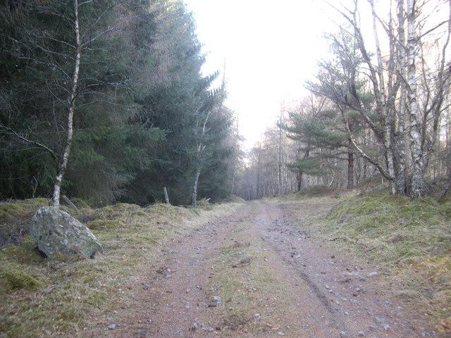 Track by Craiglash Quarry