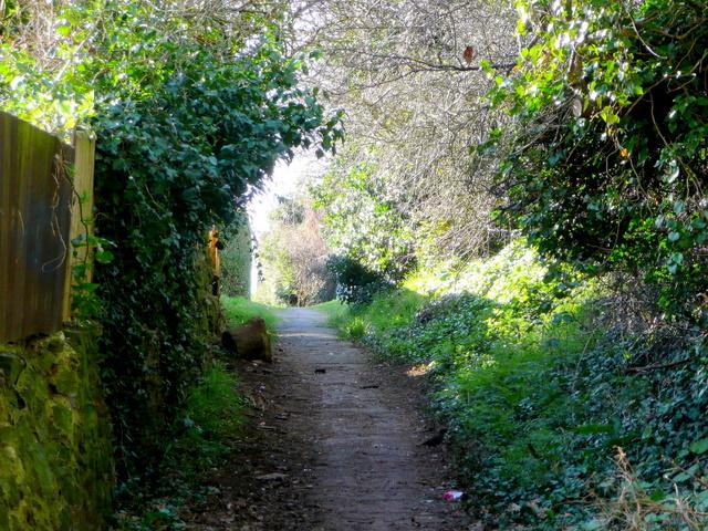 Footpath linking Ledbury road and Brampton Road