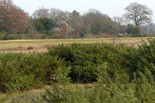 Greenham Common