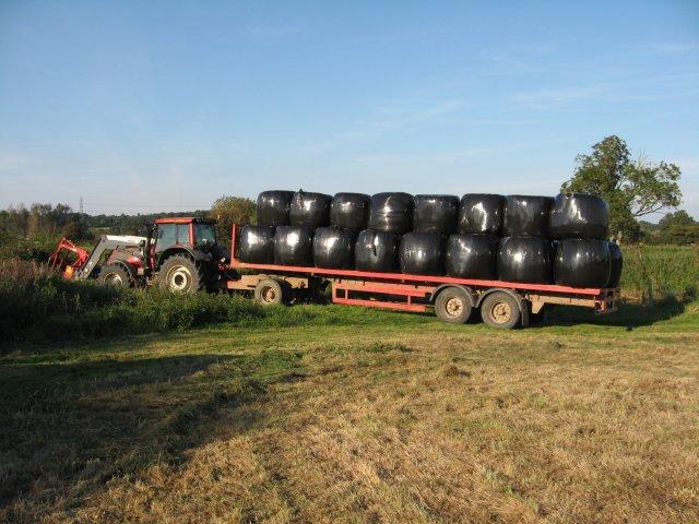 Grass bales at Bear Mead