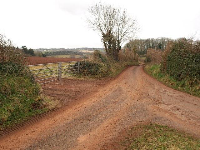 Lane junction near East Combe