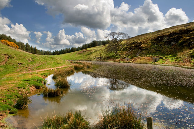 Small lake near Happy Valley in lower Cheviots