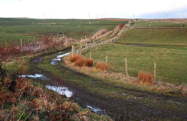 Track to Kirbister