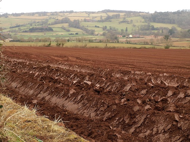 Ploughed field near East Combe