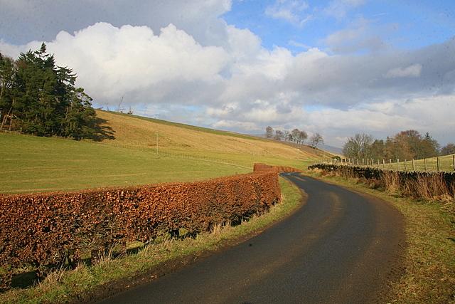 Road to Auchnacree