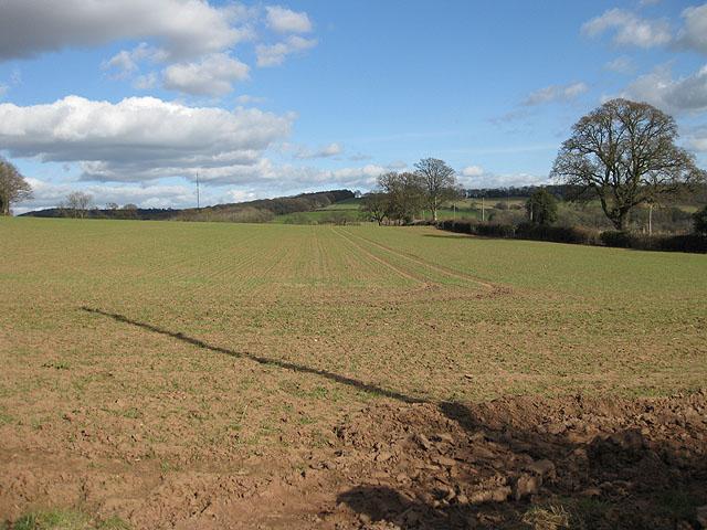 Arable field near Maythorn Farm