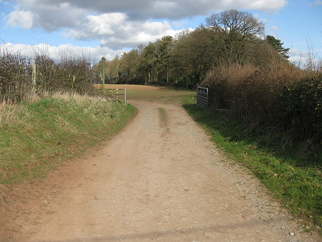 Footpath to Peartree Green