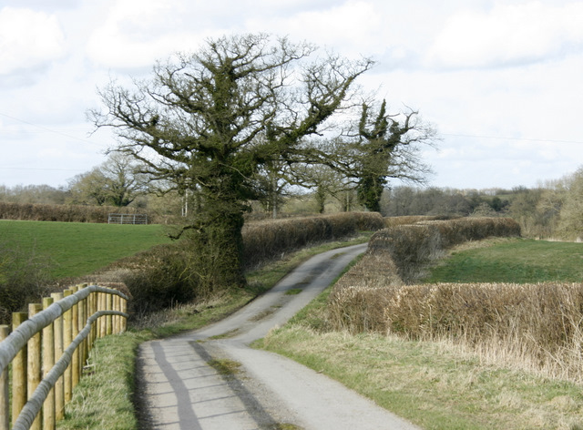 2009 : At the end of the lane to Alice Street Farm