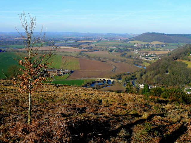 View north from Coppet Hill