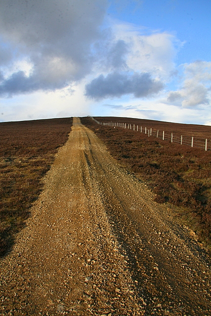 Track over New Moss