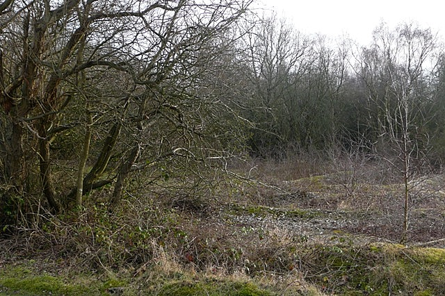 Crookham Common