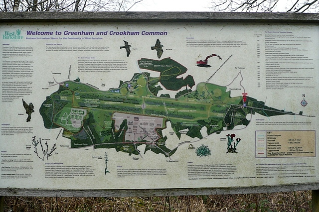 Greenham and Crookham Commons information