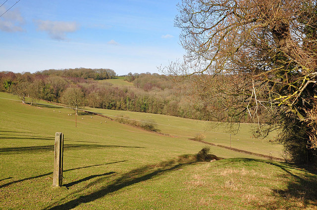 Herefordshire Farmland