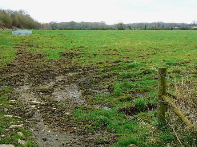 Pasture between Tockenham and Bushton
