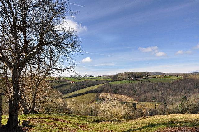 Farmland near Rowlestone