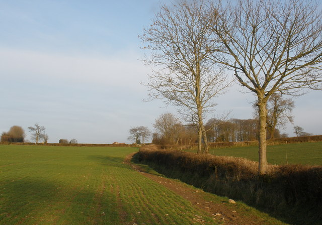 Fields, east of Otterford