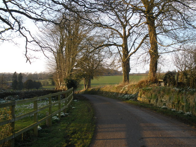 The road to Otterford