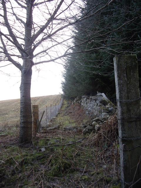 Fence and wall near Craiglash