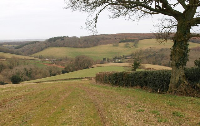 Looking towards Lower Aisholt