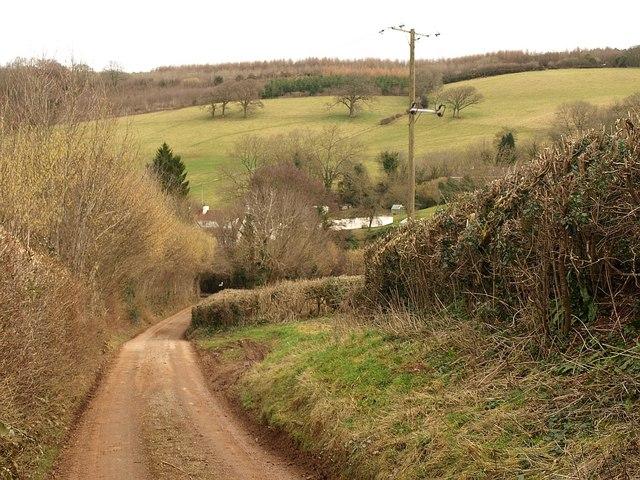 Lane, Lower Aisholt