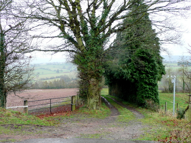 Track and footpath to Studley